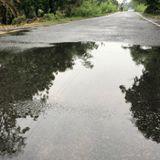 तस्वीरों की ज़ुबां: सूखे बिहार में सोने सी बारिश की बूंदें