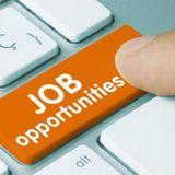 सरकारी नौकरी: 10वीं और12वीं पास के लिए इस हफ्ते बंपर नौकरियां, जल्द करें अप्लाई