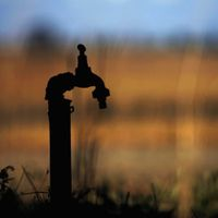 Chennai: a pioneer in rainwater harvesting, failure in saving water