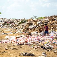 Ahead of COP25, environmentalists in India highlight Waste to Energy plants as problem