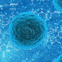 'Fingerprint' of human cells can help diagnose dangerous diseases like cancer