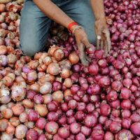 प्याज के निर्यात पर पाबंदी से नाराज सैकड़ों किसानों ने मुंबई-आगरा हाइवे को किया जाम