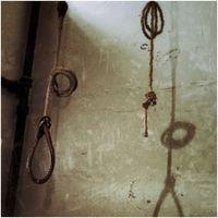 Reverse Swing: Revenge as the New Rasa
