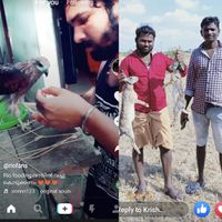 Poachers show off on TikTok, get arrested by the TN forest dept