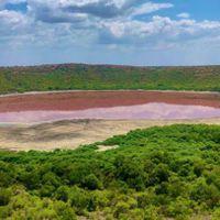 ऐतिहासिक लोनार झील का पानी गुलाबी होने के बाद बॉम्बे हाई कोर्ट ने लगाई फटकार, कहा मर रही है झील