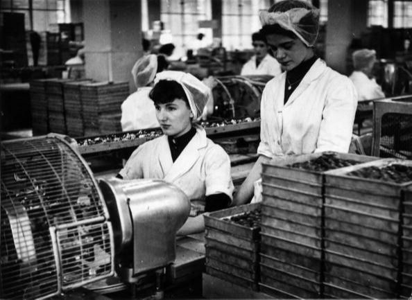 6th February 1954: Girls at work wrapping chocolates at Cadbury's model factory at Bournville, Birmingham. (Photo by Bert Hardy/Picture Post/Hulton Archive/Getty Images)