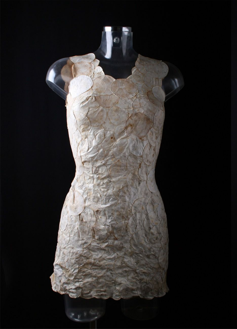 A Dutch fashion designer grows an eco-friendly dress from mushroom root in just one week.